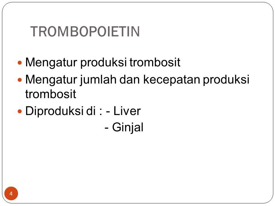 TROMBOPOIETIN Mengatur produksi trombosit