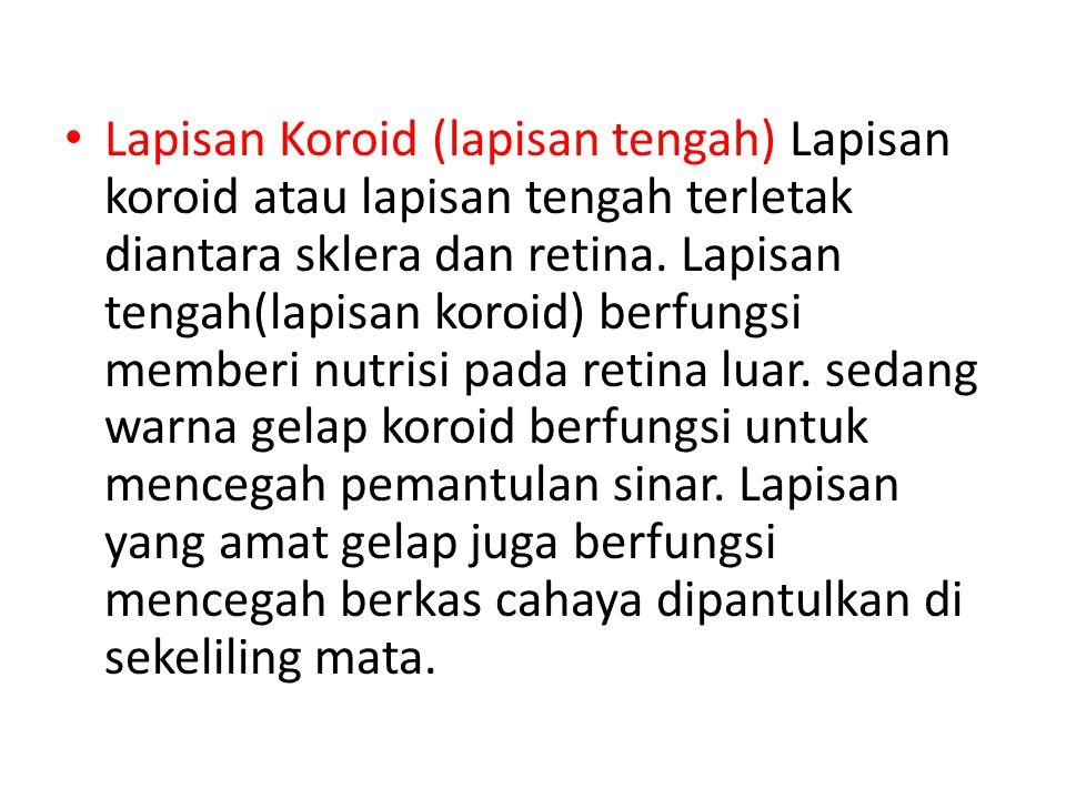 Lapisan Koroid (lapisan tengah) Lapisan koroid atau lapisan tengah terletak diantara sklera dan retina.