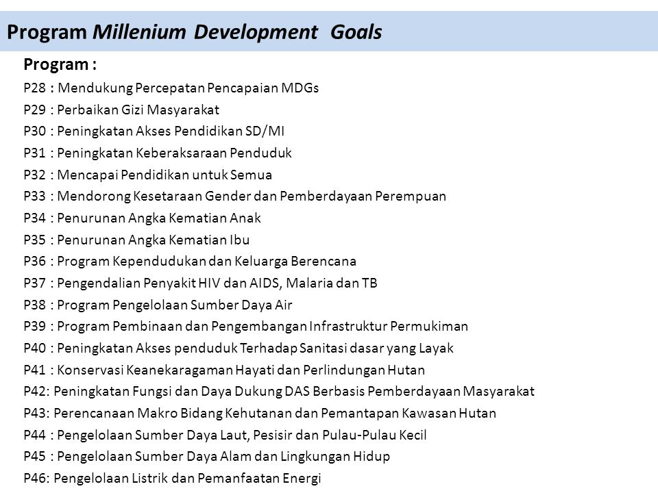 Program Millenium Development Goals