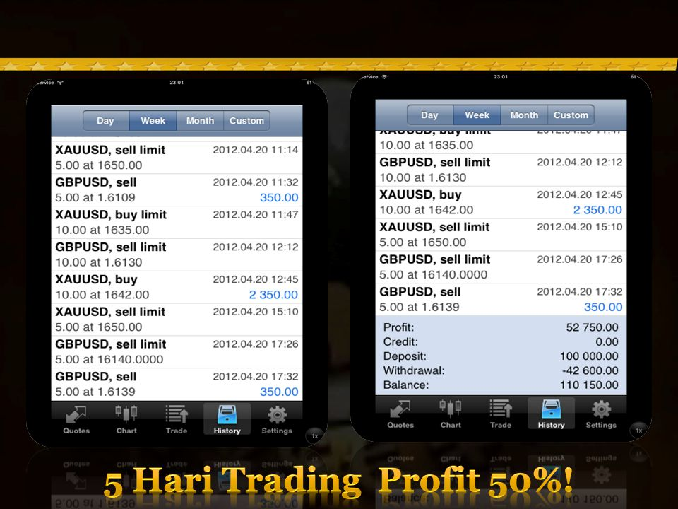 5 Hari Trading Profit 50%!
