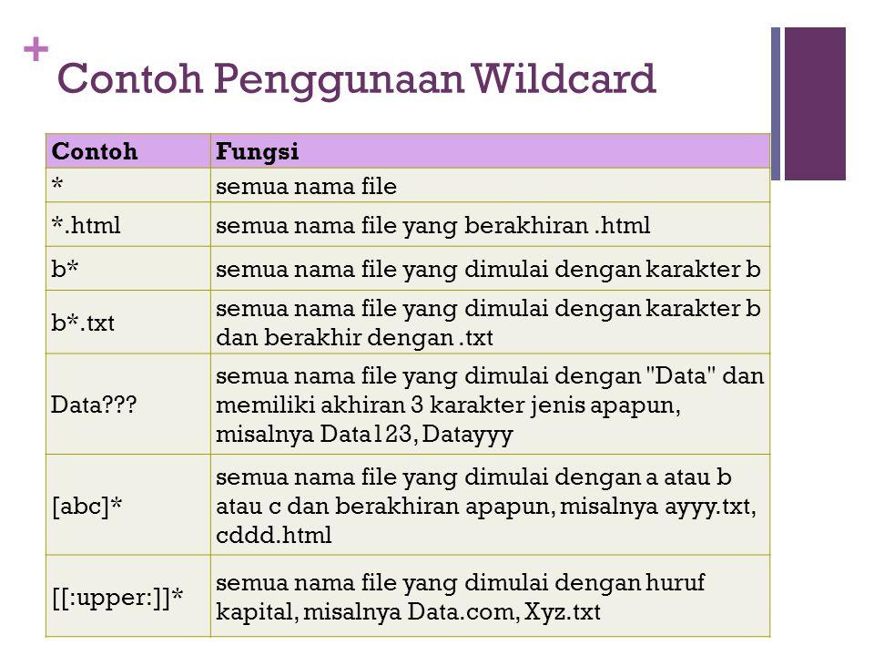 Contoh Penggunaan Wildcard