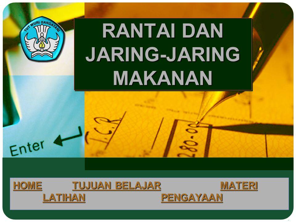 RANTAI DAN JARING-JARING MAKANAN