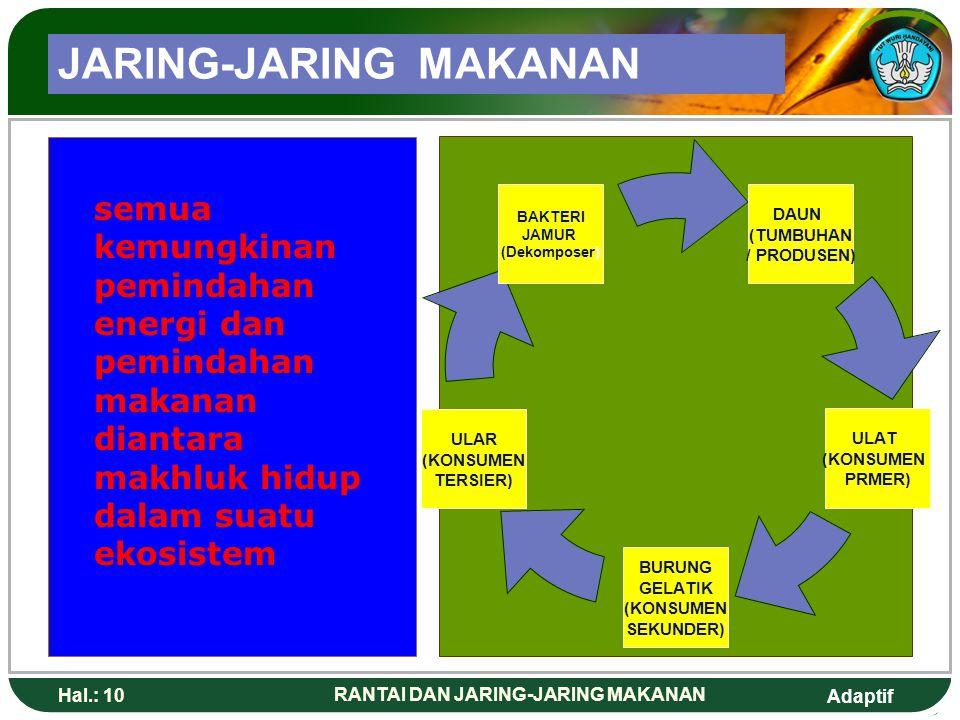JARING-JARING MAKANAN