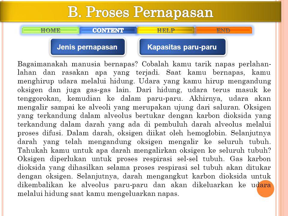 B. Proses Pernapasan Jenis pernapasan Kapasitas paru-paru