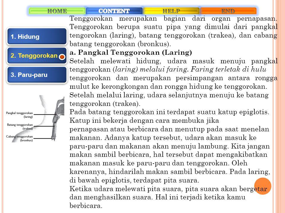 a. Pangkal Tenggorokan (Laring)