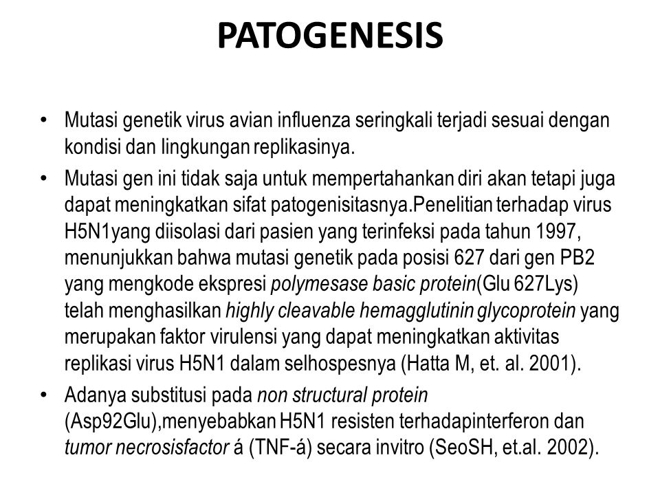 PATOGENESIS Mutasi genetik virus avian influenza seringkali terjadi sesuai dengan kondisi dan lingkungan replikasinya.