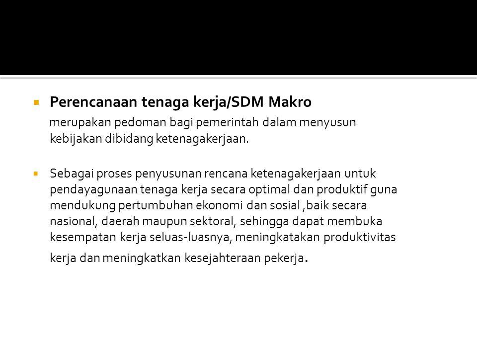 Perencanaan tenaga kerja/SDM Makro