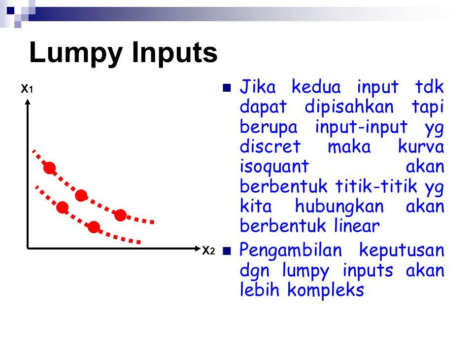 Lumpy Inputs