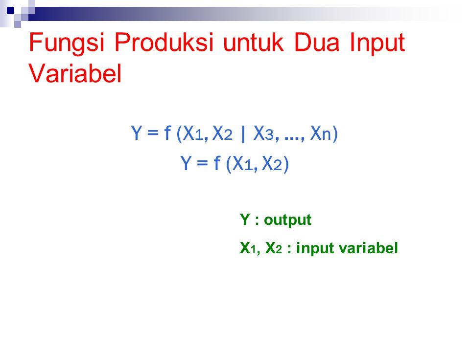 Fungsi Produksi untuk Dua Input Variabel