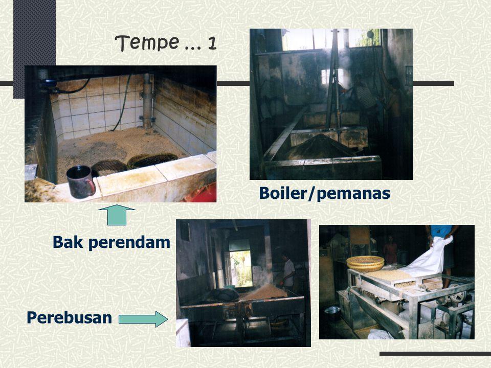 Tempe … 1 Boiler/pemanas Bak perendam Perebusan