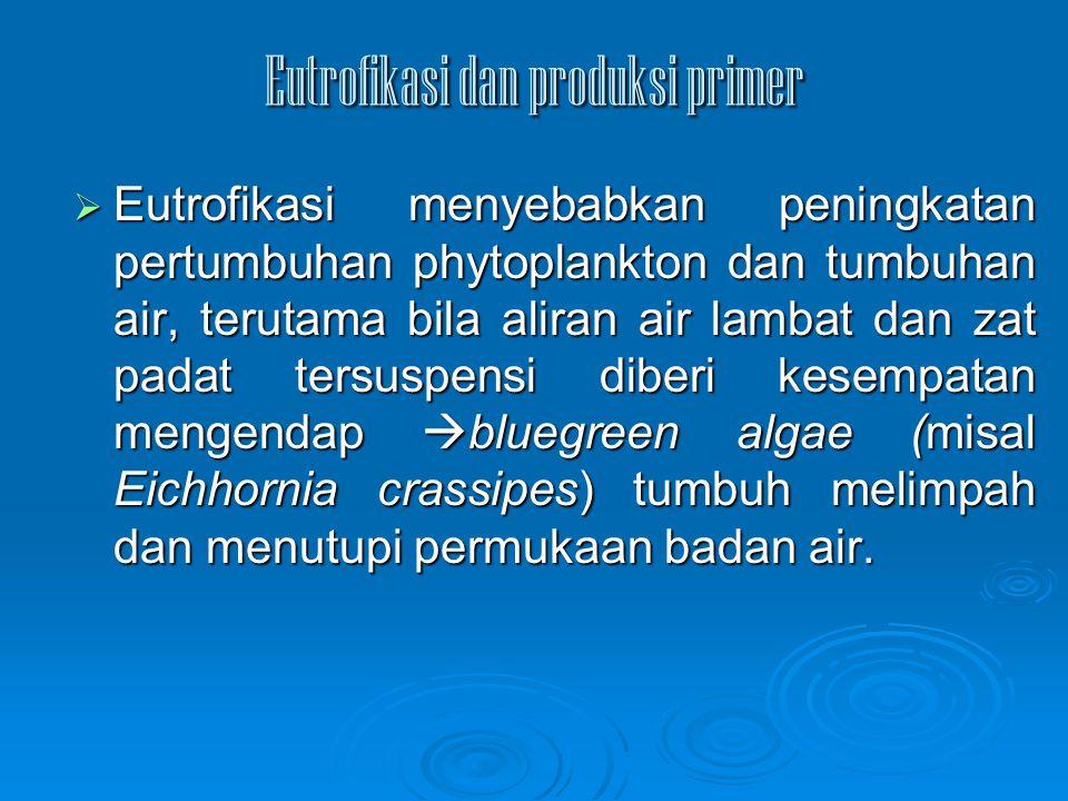 Eutrofikasi dan produksi primer