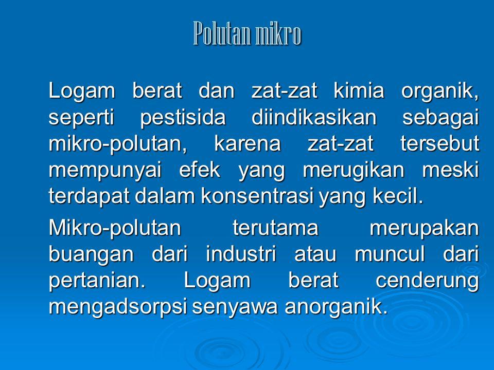 Polutan mikro