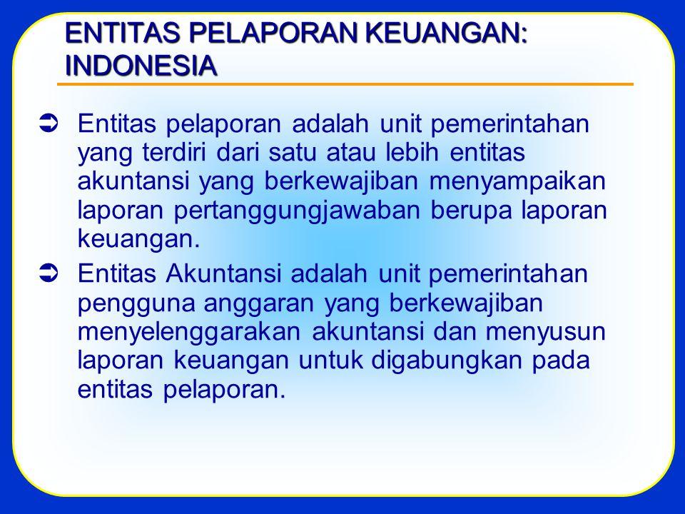 ENTITAS PELAPORAN KEUANGAN: INDONESIA