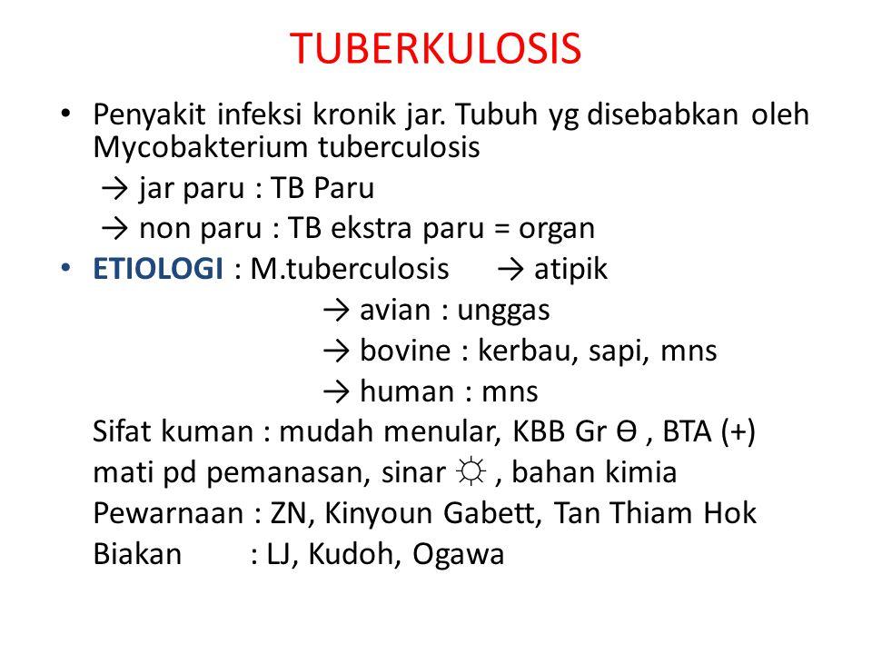 TUBERKULOSIS Penyakit infeksi kronik jar. Tubuh yg disebabkan oleh Mycobakterium tuberculosis. → jar paru : TB Paru.