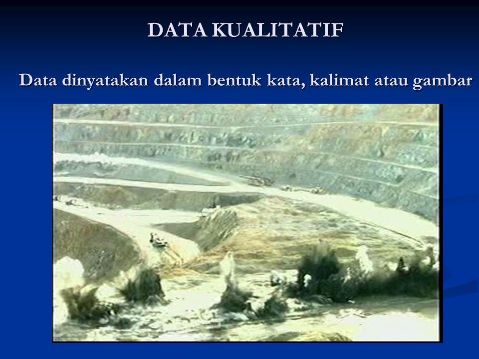 DATA KUALITATIF Data dinyatakan dalam bentuk kata, kalimat atau gambar