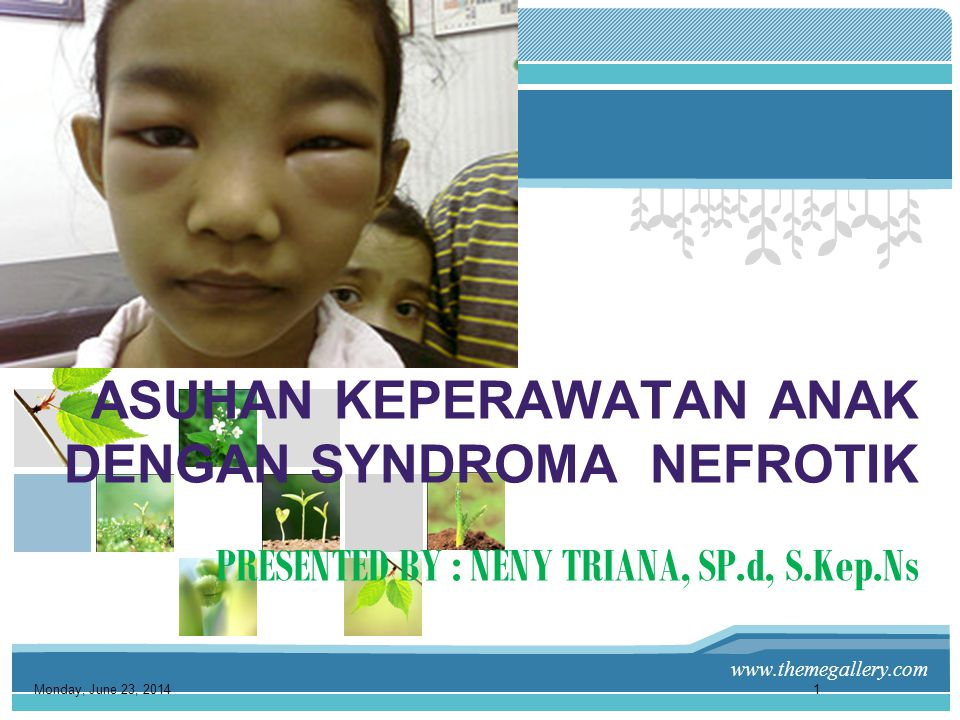 ASUHAN KEPERAWATAN ANAK DENGAN SYNDROMA NEFROTIK PRESENTED BY : NENY TRIANA, SP.d, S.Kep.Ns