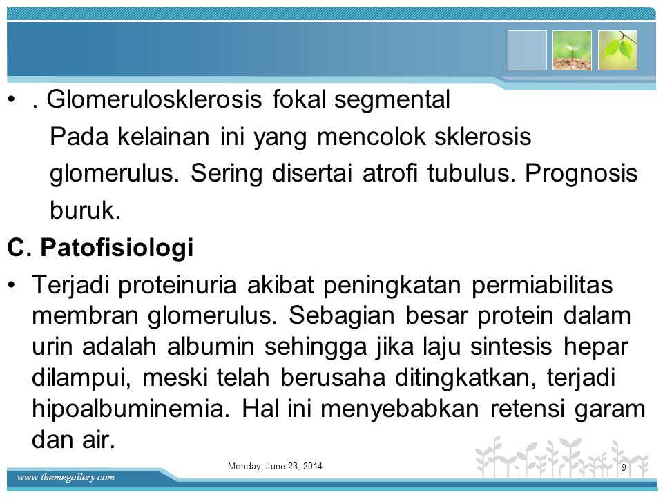 . Glomerulosklerosis fokal segmental