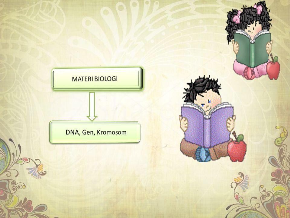 MATERI BIOLOGI DNA, Gen, Kromosom