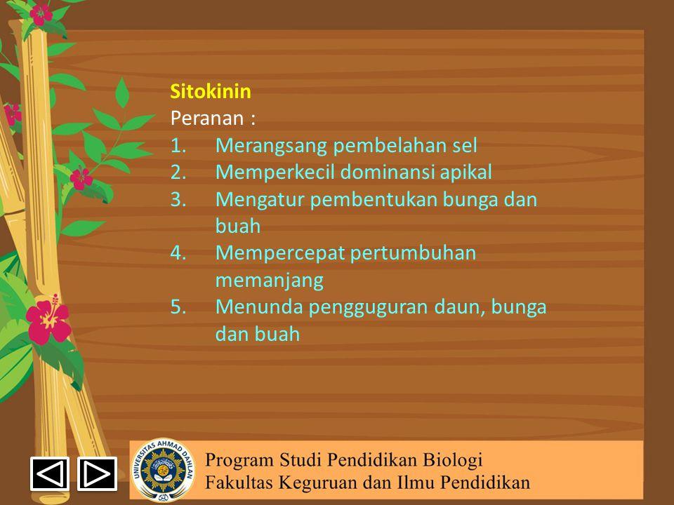 Sitokinin Peranan : Merangsang pembelahan sel. Memperkecil dominansi apikal. Mengatur pembentukan bunga dan buah.