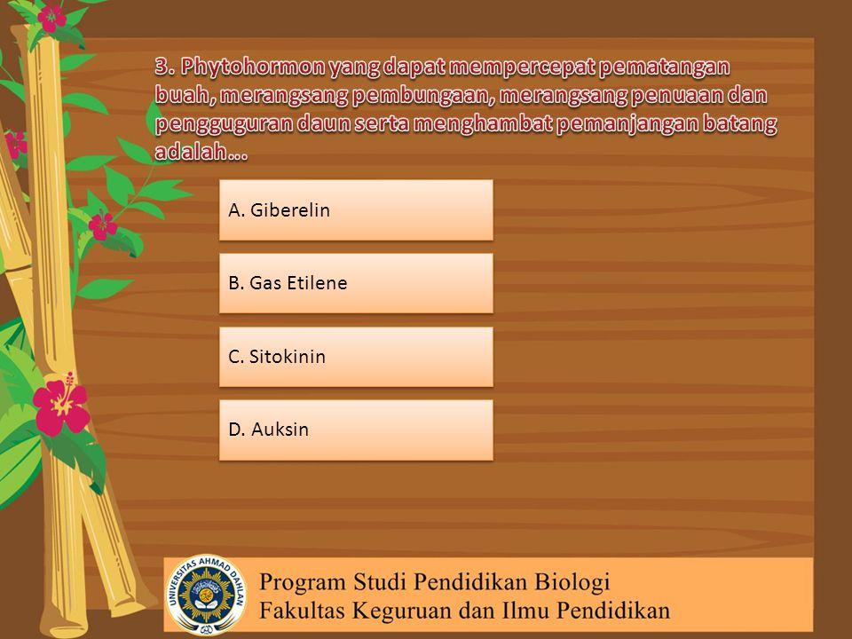 3. Phytohormon yang dapat mempercepat pematangan buah, merangsang pembungaan, merangsang penuaan dan pengguguran daun serta menghambat pemanjangan batang adalah...