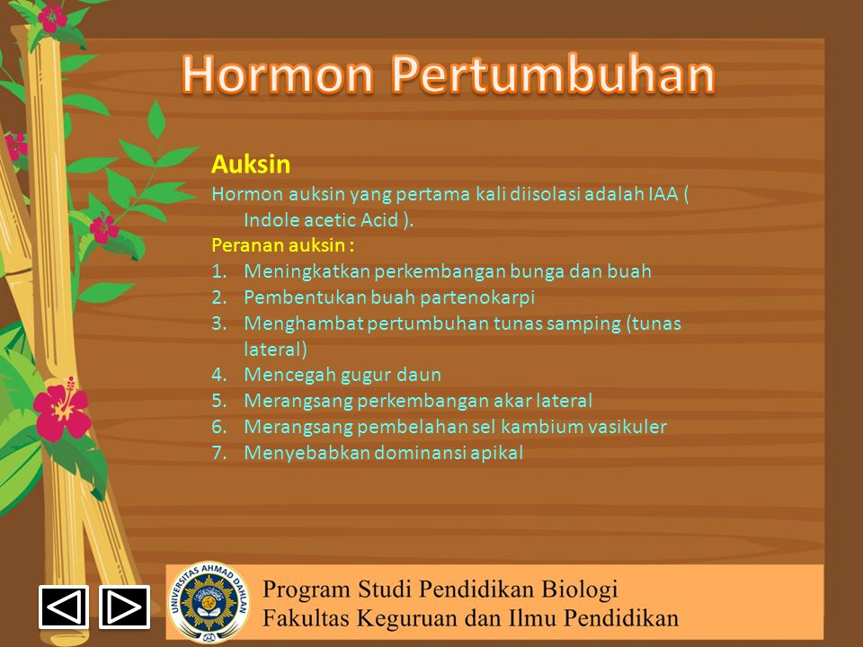 Hormon Pertumbuhan Auksin