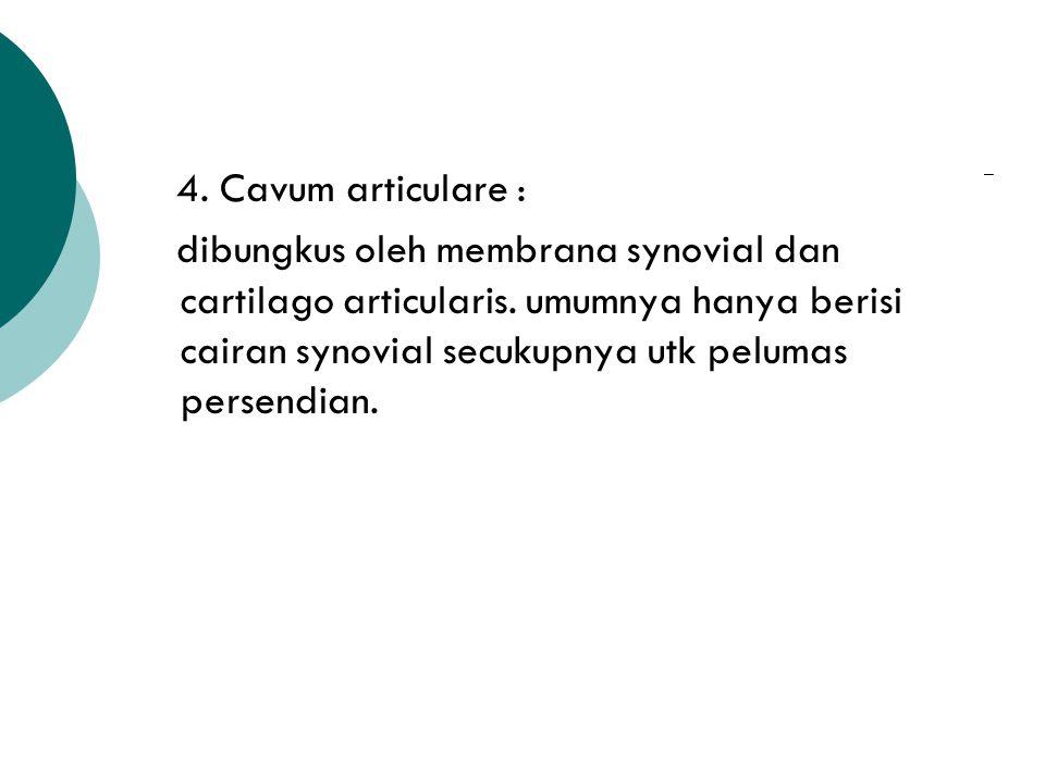 4. Cavum articulare :