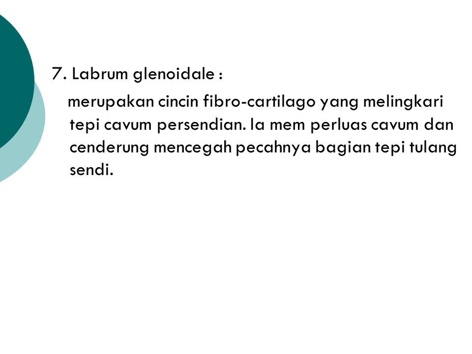 7. Labrum glenoidale :