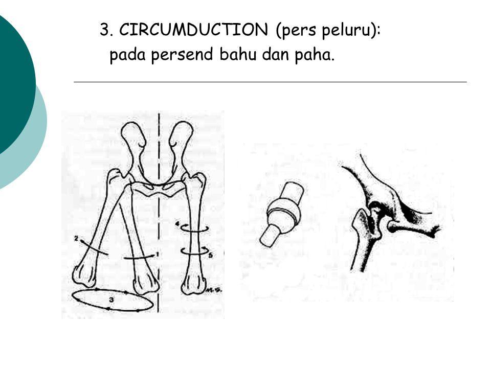 3. CIRCUMDUCTION (pers peluru):