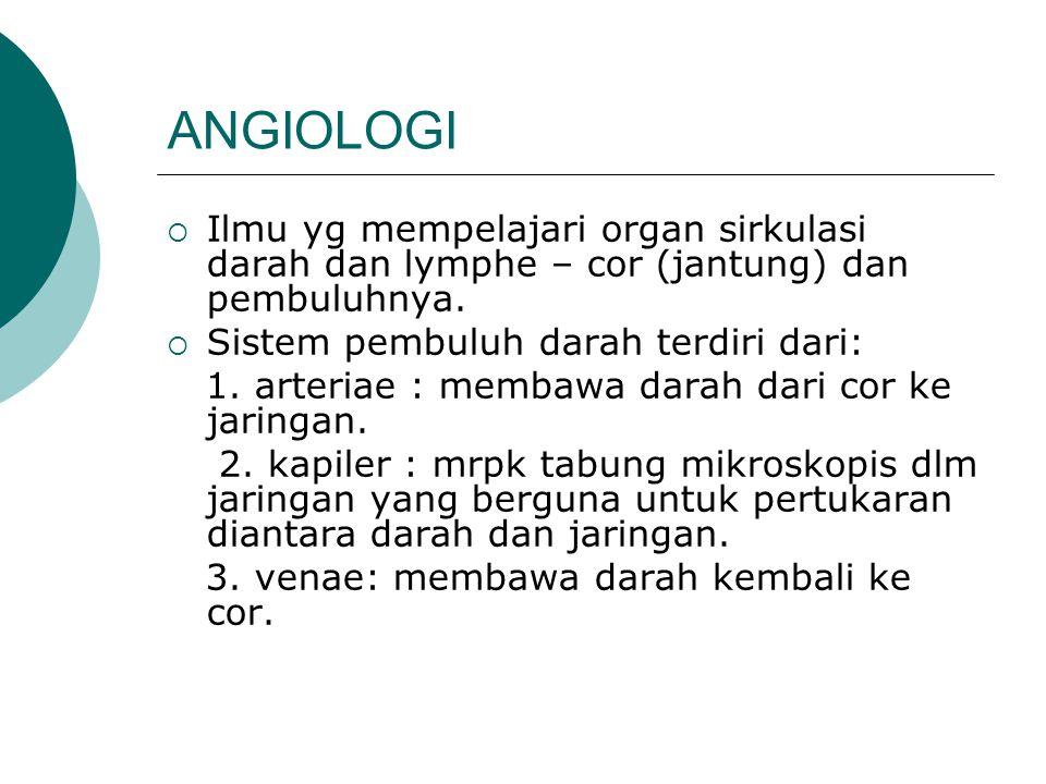 ANGIOLOGI Ilmu yg mempelajari organ sirkulasi darah dan lymphe – cor (jantung) dan pembuluhnya. Sistem pembuluh darah terdiri dari: