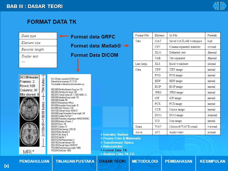 FORMAT DATA TK BAB III : DASAR TEORI Format data GRFC