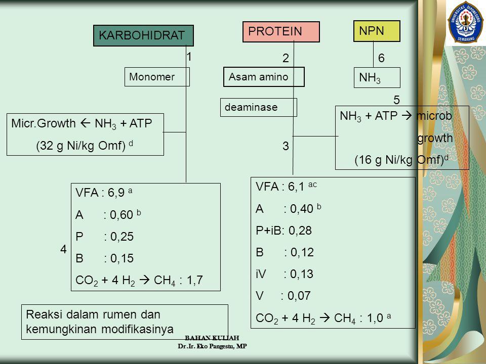 Reaksi dalam rumen dan kemungkinan modifikasinya