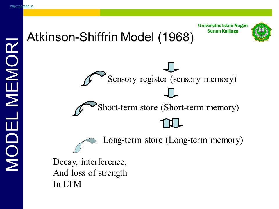 Atkinson-Shiffrin Model (1968)