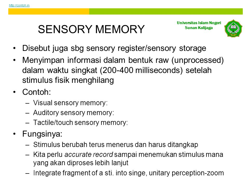 SENSORY MEMORY Disebut juga sbg sensory register/sensory storage