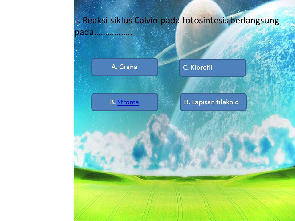 3. Reaksi siklus Calvin pada fotosintesis berlangsung pada……………..