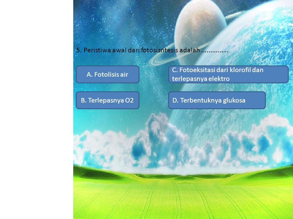 5. Peristiwa awal dari fotosisntesis adalah ...............
