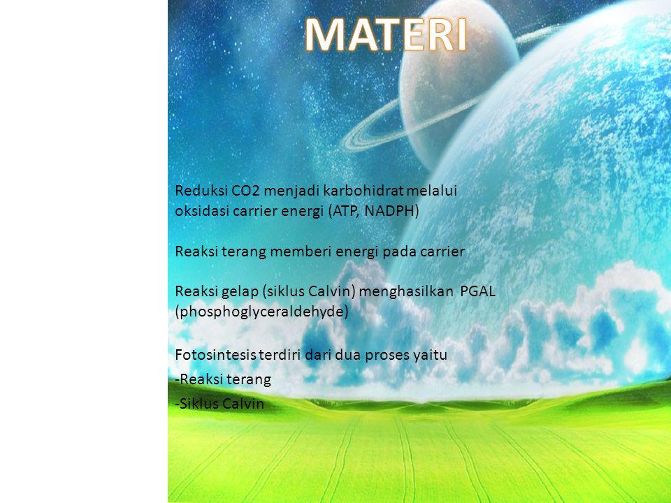 MATERI Reduksi CO2 menjadi karbohidrat melalui oksidasi carrier energi (ATP, NADPH) Reaksi terang memberi energi pada carrier.