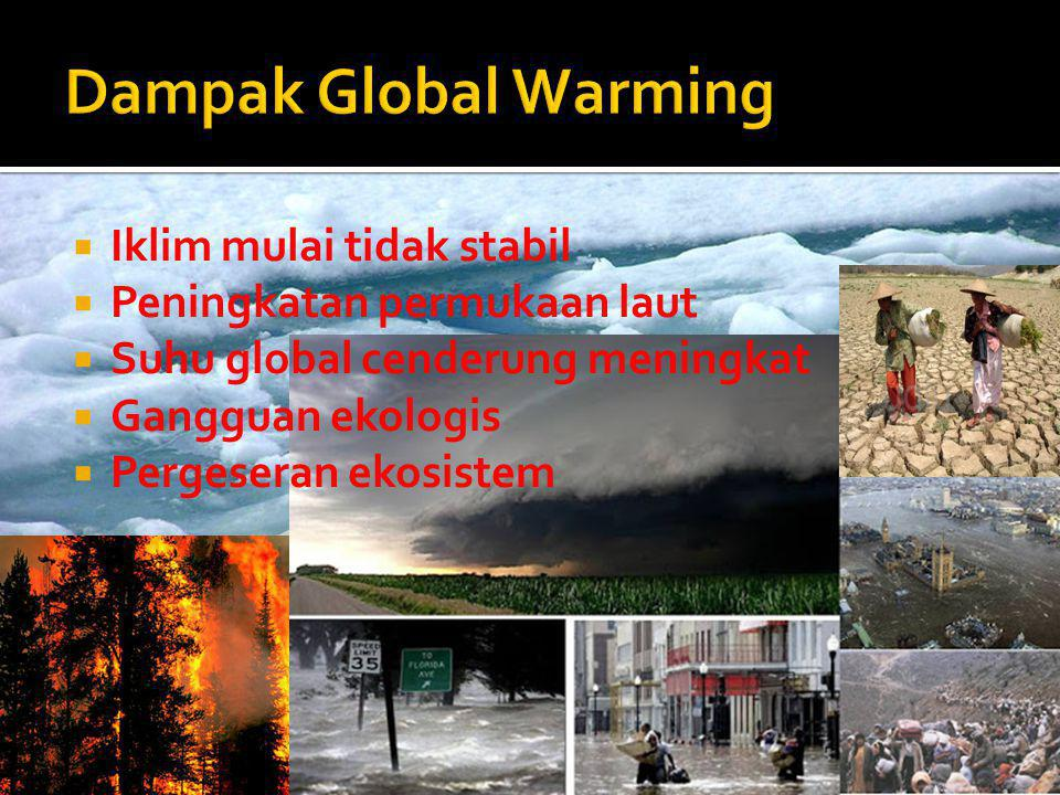 Dampak Global Warming Iklim mulai tidak stabil