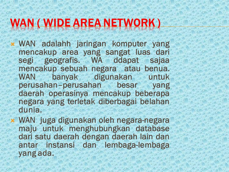 WAN ( Wide Area Network )