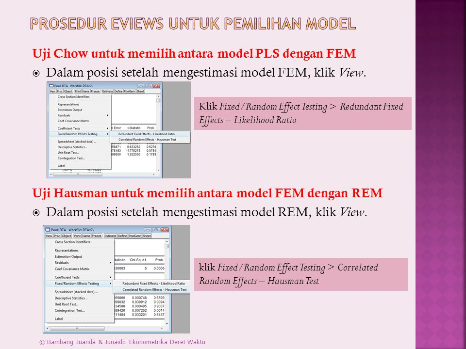 Prosedur Eviews untuk Pemilihan Model