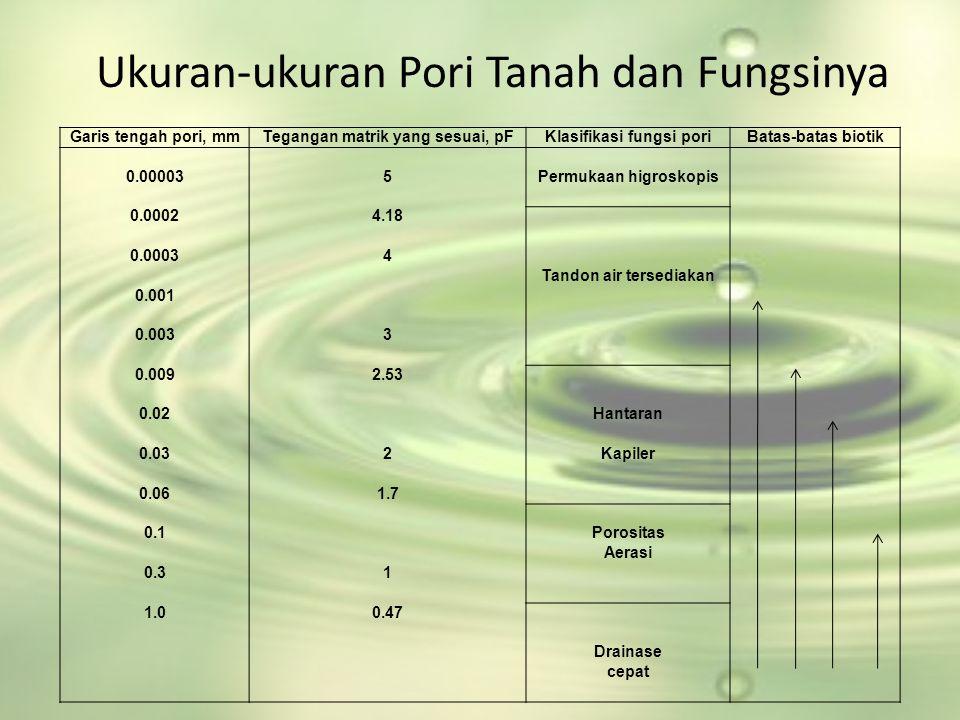 Ukuran-ukuran Pori Tanah dan Fungsinya