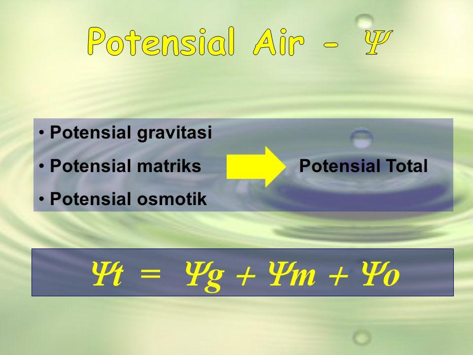 Potensial Air - Y Yt = Yg + Ym + Yo