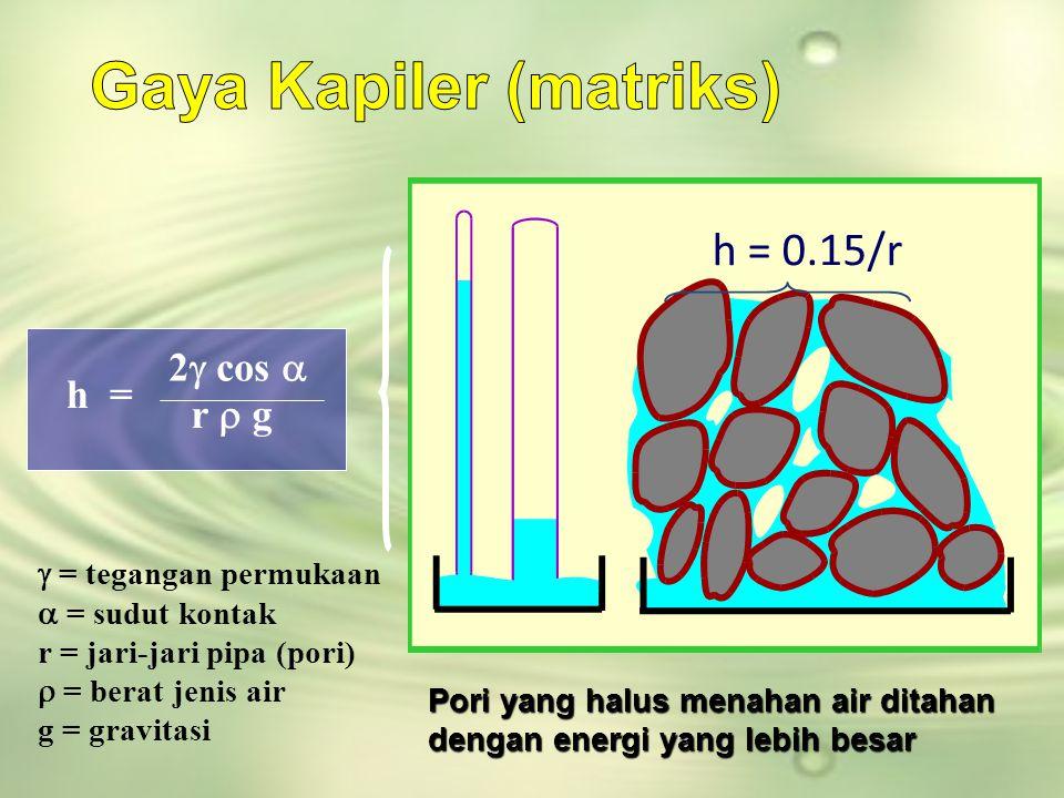 Gaya Kapiler (matriks)