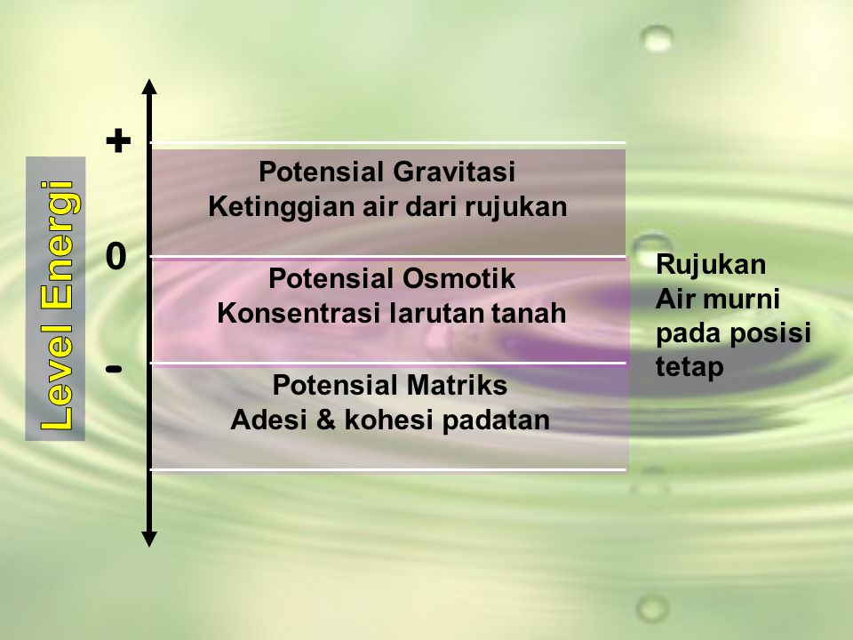 Ketinggian air dari rujukan Konsentrasi larutan tanah