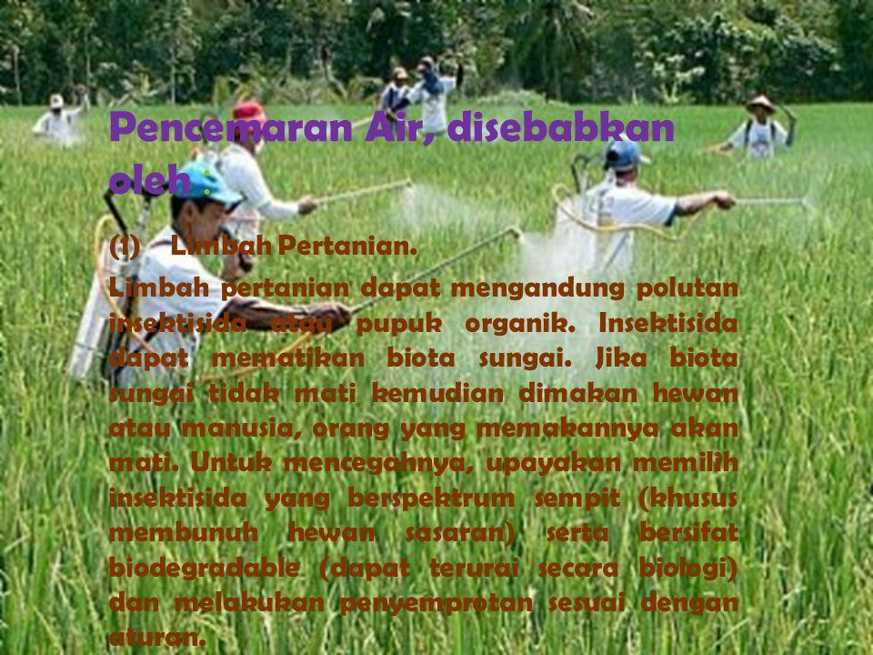 Pencemaran Air, disebabkan oleh :