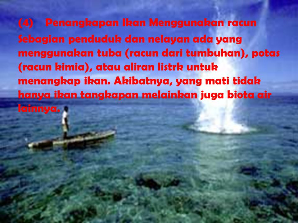 (4) Penangkapan Ikan Menggunakan racun Sebagian penduduk dan nelayan ada yang menggunakan tuba (racun dari tumbuhan), potas (racun kimia), atau aliran listrk untuk menangkap ikan.