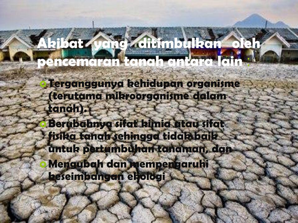 Akibat yang ditimbulkan oleh pencemaran tanah antara lain :