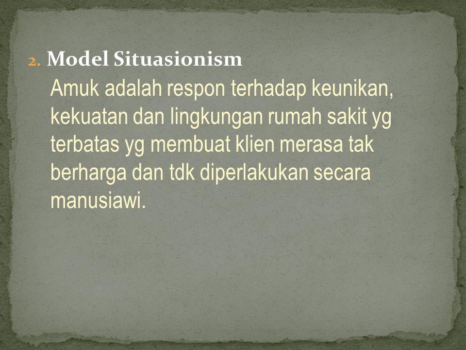 Model Situasionism