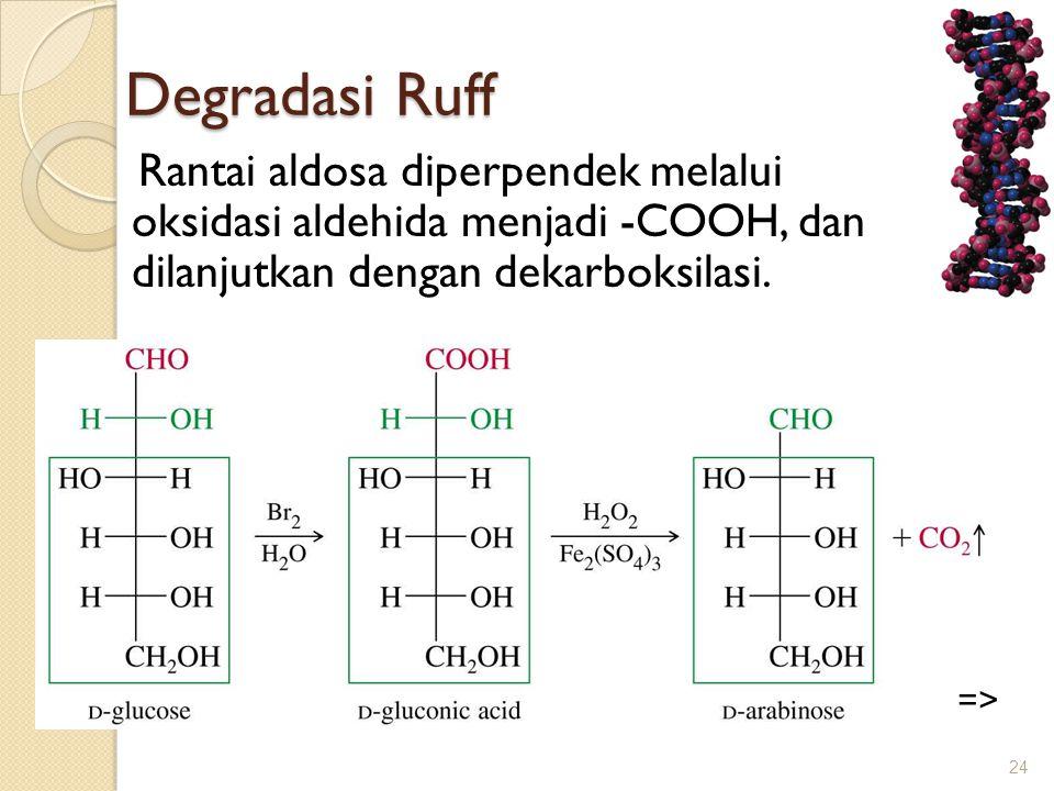 Degradasi Ruff Rantai aldosa diperpendek melalui oksidasi aldehida menjadi -COOH, dan dilanjutkan dengan dekarboksilasi.