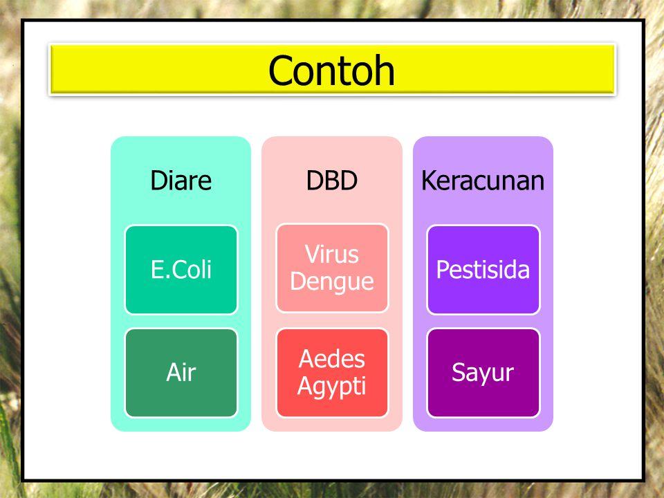 Contoh Diare E.Coli Air DBD Virus Dengue Aedes Agypti Keracunan