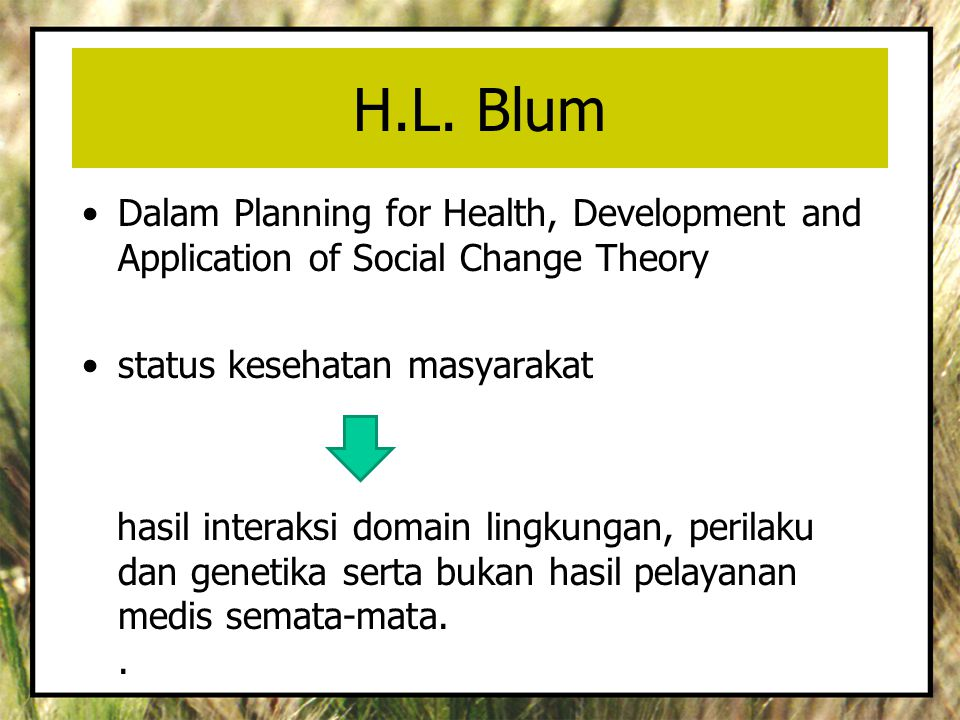 H.L. Blum Dalam Planning for Health, Development and Application of Social Change Theory. status kesehatan masyarakat.